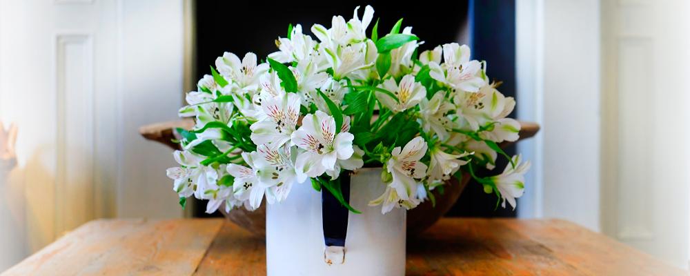 Elimina i cattivi odori da casa tua in modo 100 naturale con i profumi per ambiente naturalsal - Cattivi odori in casa ...